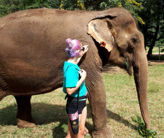 Firefish staff work at an elephant sanctuary in Thailand